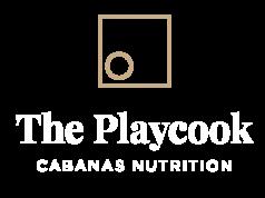logo-ThePlaycook